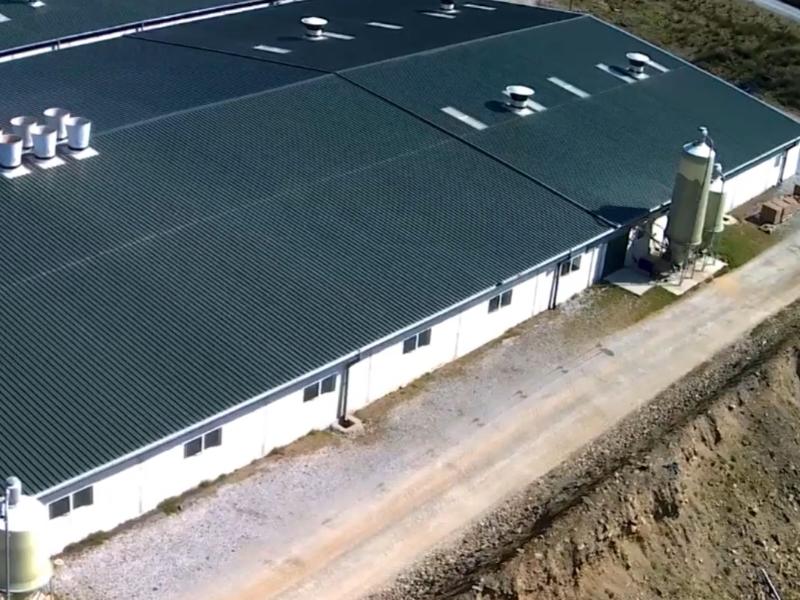 Ashleigh Farms   Kenneally Steel Fabrication